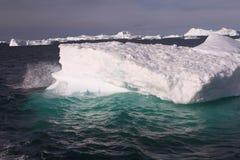 παγόβουνο της Γροιλανδί Στοκ εικόνα με δικαίωμα ελεύθερης χρήσης