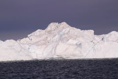 παγόβουνο της Γροιλανδί Στοκ Φωτογραφίες