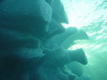 παγόβουνο 2 υποβρύχιο Στοκ φωτογραφία με δικαίωμα ελεύθερης χρήσης