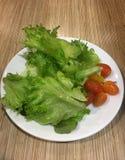 Παγόβουνο Frille με τη σαλάτα ντοματών Στοκ Εικόνες