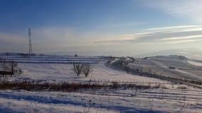 παγώνοντας χειμώνας δέντρων χιονιού υπολοίπων εδάφους ημέρας στοκ φωτογραφία με δικαίωμα ελεύθερης χρήσης