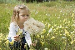 Παιδί με τις πικραλίδες Στοκ φωτογραφία με δικαίωμα ελεύθερης χρήσης