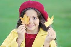 Παιδί με τον περίπατο φύλλων σφενδάμου φθινοπώρου Το coziness φθινοπώρου είναι ακριβώς γύρω Μικρό κορίτσι που διεγείρεται για την στοκ φωτογραφία με δικαίωμα ελεύθερης χρήσης