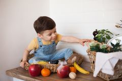 Παιδί που έχει ένα επιτραπέζιο σύνολο της οργανικής τροφής Εύθυμο μικρό παιδί που τρώει την υγιή σαλάτα και τα φρούτα Μωρό που επ στοκ εικόνα