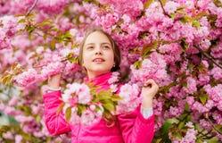 Παιδί που απολαμβάνει το ρόδινο άνθος κερασιών r Το ροζ είναι το πιό κοριτσίστικο χρώμα Φωτεινός και δονούμενος Το ροζ είναι η συ στοκ φωτογραφίες με δικαίωμα ελεύθερης χρήσης