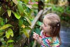 Παιδί που εξετάζει το λουλούδι στη ζούγκλα Στοκ Εικόνα