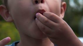 Παιδί που τρώει τα μούρα υπαίθρια απόθεμα βίντεο