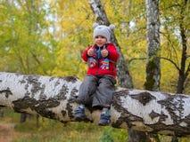 Παιδί στο πάρκο φθινοπώρου που έχει τη διασκέδαση που παίζει και που γελά, που περπατά στο καθαρό αέρα Μια όμορφη φυσική θέση στοκ εικόνα με δικαίωμα ελεύθερης χρήσης