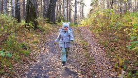 Παιδί στο πάρκο φθινοπώρου που έχει τη διασκέδαση που παίζει και που γελά, που περπατά στο καθαρό αέρα Μια όμορφη φυσική θέση απόθεμα βίντεο