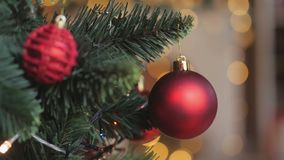 Παιδιά που διακοσμούν ένα χριστουγεννιάτικο δέντρο απόθεμα βίντεο