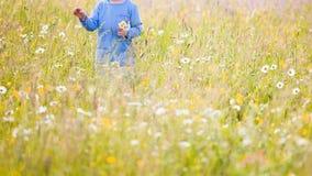 Παιδιά που επιλέγουν τα λουλούδια σε ένα λιβάδι στοκ φωτογραφίες