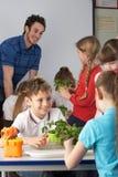 Παιδιά που μαθαίνουν για τα φυτά στη σχολική τάξη Στοκ εικόνες με δικαίωμα ελεύθερης χρήσης