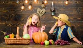 Παιδιά που παρουσιάζουν το ξύλινο υπόβαθρο αγροτικών συγκομιδών r Λόγοι για τους οποίους κάθε παιδί πρέπει να δοκιμάσει την καλλι στοκ φωτογραφία με δικαίωμα ελεύθερης χρήσης