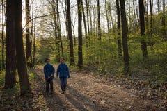 Παιδιά που περπατούν σε ένα δάσος άνοιξη Στοκ εικόνα με δικαίωμα ελεύθερης χρήσης
