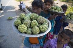Παιδιά που πωλούν τα μήλα κρέμας από την άκρη του δρόμου στοκ φωτογραφίες