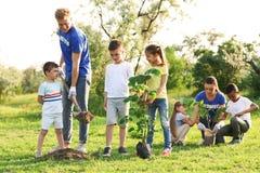 Παιδιά που φυτεύουν τα δέντρα με τους εθελοντές στοκ φωτογραφία