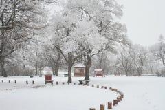 παιδικός σταθμός 3 δασικό&sigma Στοκ φωτογραφίες με δικαίωμα ελεύθερης χρήσης