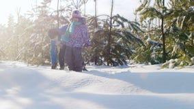 Παιχνίδια αδελφών με τη νεώτερη αδελφή του σε ένα χιονισμένο δάσος απόθεμα βίντεο