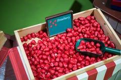 Παιχνίδια μωρών φραουλών Στοκ εικόνα με δικαίωμα ελεύθερης χρήσης