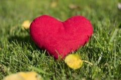 Παιχνίδι βελούδου - καρδιά Ένα μεγάλο δώρο για την ημέρα του βαλεντίνου Παρουσιάζει αγάπη στοκ φωτογραφίες