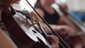 Παιχνίδι βιολιστών στην ορχήστρα στο θολωμένο υπόβαθρο, βιολί κινηματογραφήσεων σε πρώτο πλάνο απόθεμα βίντεο
