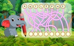 Παιχνίδι γρίφων λογικής για τη μελέτη αγγλικά με τον ελέφαντα διανυσματική απεικόνιση