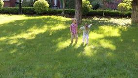 Παιχνίδι δύο αστείο μικρών παιδιών στο θερινό πάρκο στην πράσινη χλόη απόθεμα βίντεο