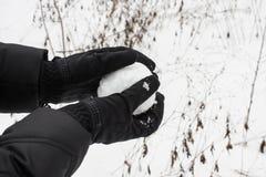 Παιχνίδι με μια χιονιά μετά από το πρόσφατα πεσμένο χιόνι στοκ εικόνα