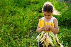 Παιχνίδι μικρών κοριτσιών σε έναν τομέα καλαμποκιού στο φθινόπωρο Παιδί που κρατά έναν σπάδικα του καλαμποκιού Συγκομιδή με τα πα στοκ εικόνες