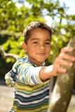 Παιχνίδι μικρών παιδιών σε ένα δέντρο Στοκ εικόνα με δικαίωμα ελεύθερης χρήσης