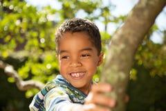 Παιχνίδι μικρών παιδιών σε ένα δέντρο Στοκ φωτογραφία με δικαίωμα ελεύθερης χρήσης