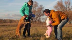 Παιχνίδι μπαμπάδων με τα παιδιά και το σκυλί στο λιβάδι σε ένα πάρκο φθινοπώρου η οικογένεια εισάγει το παιδί στο σκυλί απόθεμα βίντεο
