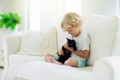 Παιχνίδι παιδιών με τη γάτα μωρών Παιδί και γατάκι στοκ εικόνες