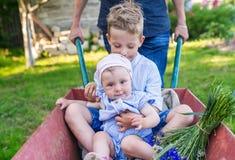 Παιχνίδι πατέρων με τα παιδιά που χρησιμοποιούν το καροτσάκι στον κήπο στοκ φωτογραφίες με δικαίωμα ελεύθερης χρήσης
