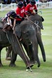 Παιχνίδι πόλο ελεφάντων. Στοκ Φωτογραφία