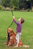 παιχνίδι σκυλιών αγοριών στοκ φωτογραφίες