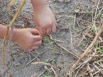 Παιχνίδι χεριών λίγου μωρού και σχετικά με τις ξηρές χλόες, το χώμα, και τις νέες βλαστάνοντας χλόες στοκ φωτογραφία με δικαίωμα ελεύθερης χρήσης
