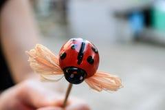 Παιχνίδι Ladybug στοκ φωτογραφία με δικαίωμα ελεύθερης χρήσης