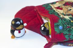 Παιχνίδι Penguin που εξετάζει άλλο στη γυναικεία κάλτσα διακοπών Στοκ Εικόνα