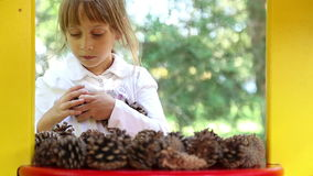 Παιχνίδια κοριτσιών με έλατο-κώνοι απόθεμα βίντεο