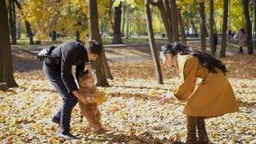 Παιχνίδι γονέων με το παιδί στα ξύλα απόθεμα βίντεο