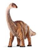 Παιχνίδι δεινοσαύρων Apatosaurus που απομονώνεται με το ψαλίδισμα της πορείας Στοκ φωτογραφία με δικαίωμα ελεύθερης χρήσης