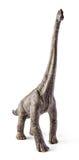 Παιχνίδι δεινοσαύρων Brachiosaurus που απομονώνεται στο άσπρο υπόβαθρο με το ψαλίδισμα της πορείας Στοκ φωτογραφία με δικαίωμα ελεύθερης χρήσης