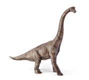 Παιχνίδι δεινοσαύρων Brachiosaurus που απομονώνεται στο άσπρο υπόβαθρο με το ψαλίδισμα της πορείας Στοκ Εικόνες