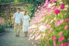 Παιχνίδι ζεύγους στα λουλούδια κήπων συνδεδεμένο διάνυσμα βαλεντίνων απεικόνισης s δύο καρδιών ημέρας Στοκ φωτογραφία με δικαίωμα ελεύθερης χρήσης