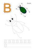 Παιχνίδι ιχνών για το γράμμα Β, κάνθαρος Στοκ Φωτογραφία