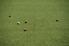 Παιχνίδι κροκέ Στοκ Φωτογραφία