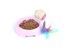 Παιχνίδι με τα ξηρά τρόφιμα γατών σε ένα κύπελλο Στοκ Φωτογραφία