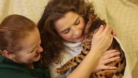 Παιχνίδι μητέρων και κορών με τη γάτα της Βεγγάλης απόθεμα βίντεο