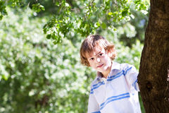 Παιχνίδι μικρών παιδιών κάτω από ένα μεγάλο rtee μια ηλιόλουστη ημέρα Στοκ εικόνα με δικαίωμα ελεύθερης χρήσης